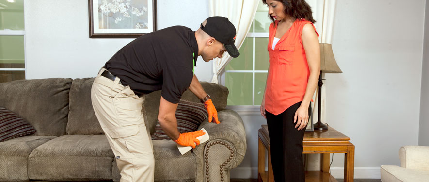 Big Lake, MN carpet upholstery cleaning